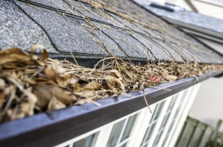 Eavestrough clogged with leaves - III